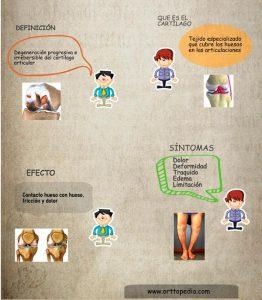 Que es la Artrosis